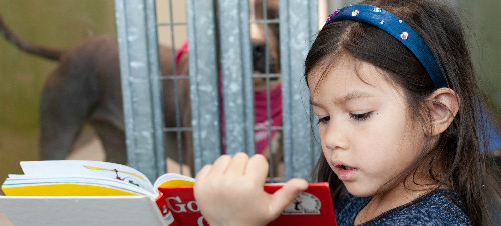 Young girl reading to dog, pet education program, pet adoption event