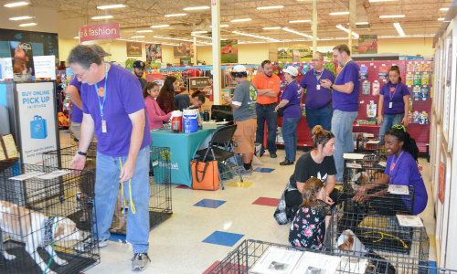 Dog Adoption Event with Volunteers