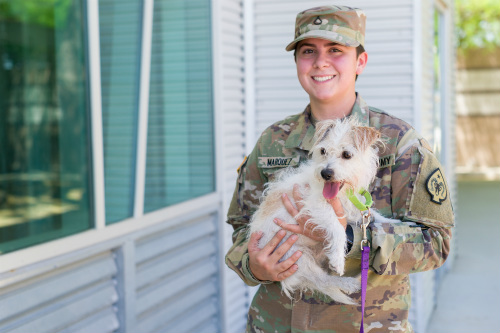Military service member and dog