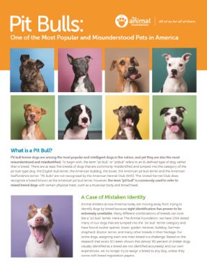 Pitbulls: One of the Most Popular and Misunderstood Pets in America - Brochure