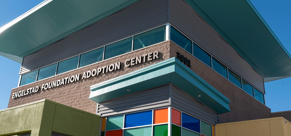 Englestad Adoption Building at The Animal Foundation campus