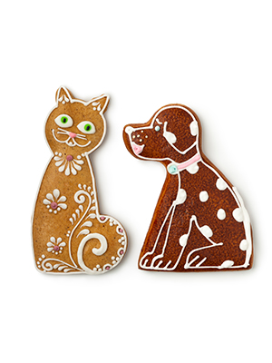 cat and dog treats