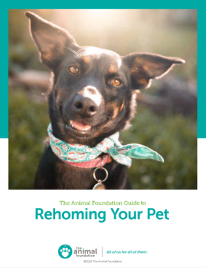 The Animal Foundation Guide to Rehoming Your Pet