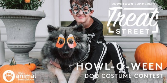 HOWL-O-WEEN Dog Costume Contest