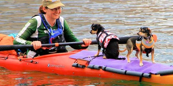 Dogs Kayaking