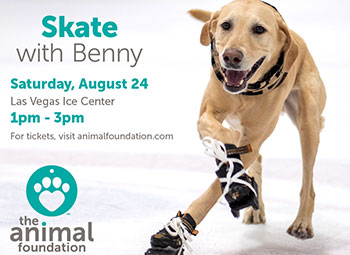 Skate with Benny Fundraiser