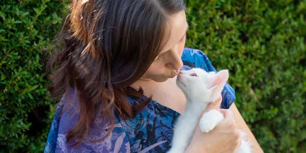 Volunteer to Foster a Pet in Las Vegas │ The Animal Foundation