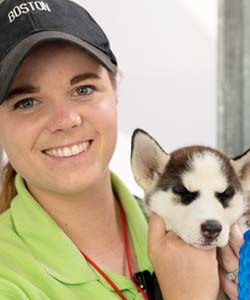 An employee holds a small white dog