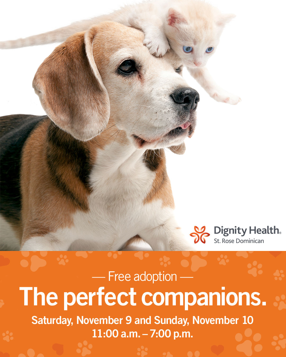 Free Pet Adoption Weekend Sponsored by Dignity Health